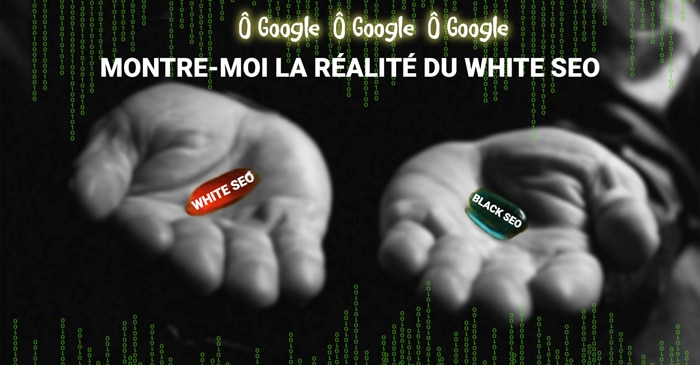 Réferencement naturel SEO technique white SEO - Domaweb